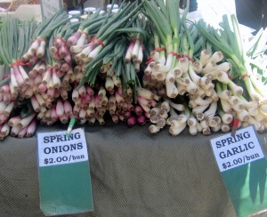 Ferry Bldg Farmers' Market on a Tuesday -spring onions