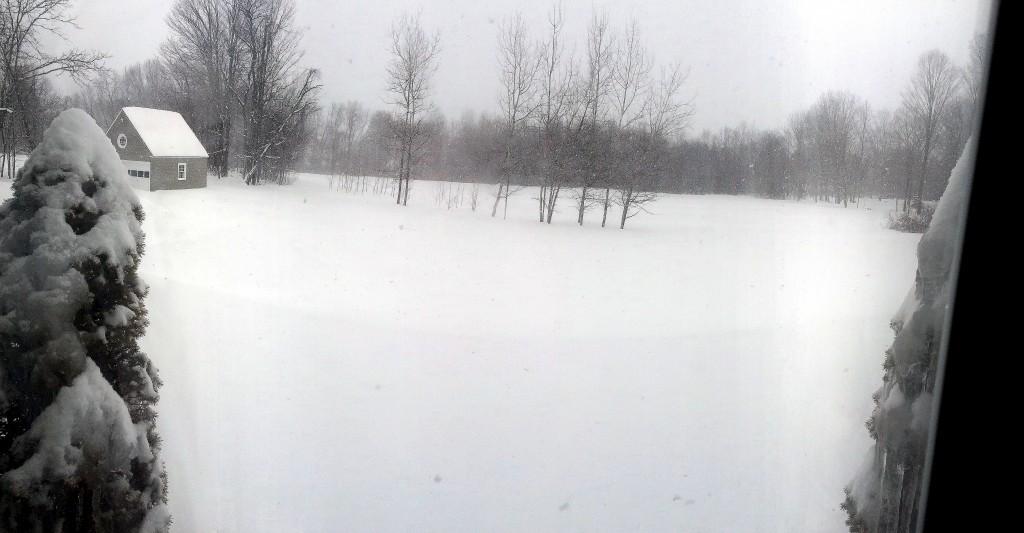 Panorama Scene 1 4580x2386